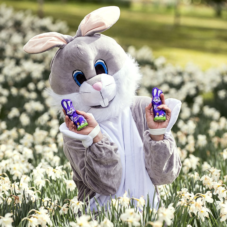 Press PR Photographer Scotland - Easter Bunny, fun and chocolate too...